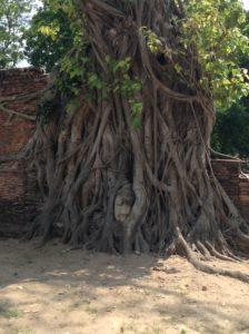 タイ・バンコクは初アジア観光旅行でした②
