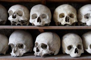 海外ドラマ「ボーンズ」骨から真実を必ず明らかにする天才法人類学者とFBI捜査官コンビ