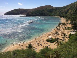 海外ドラマ「Hawaii Five-0」ハワイの魅力がわかる観光案内じゃなくて刑事ドラマ