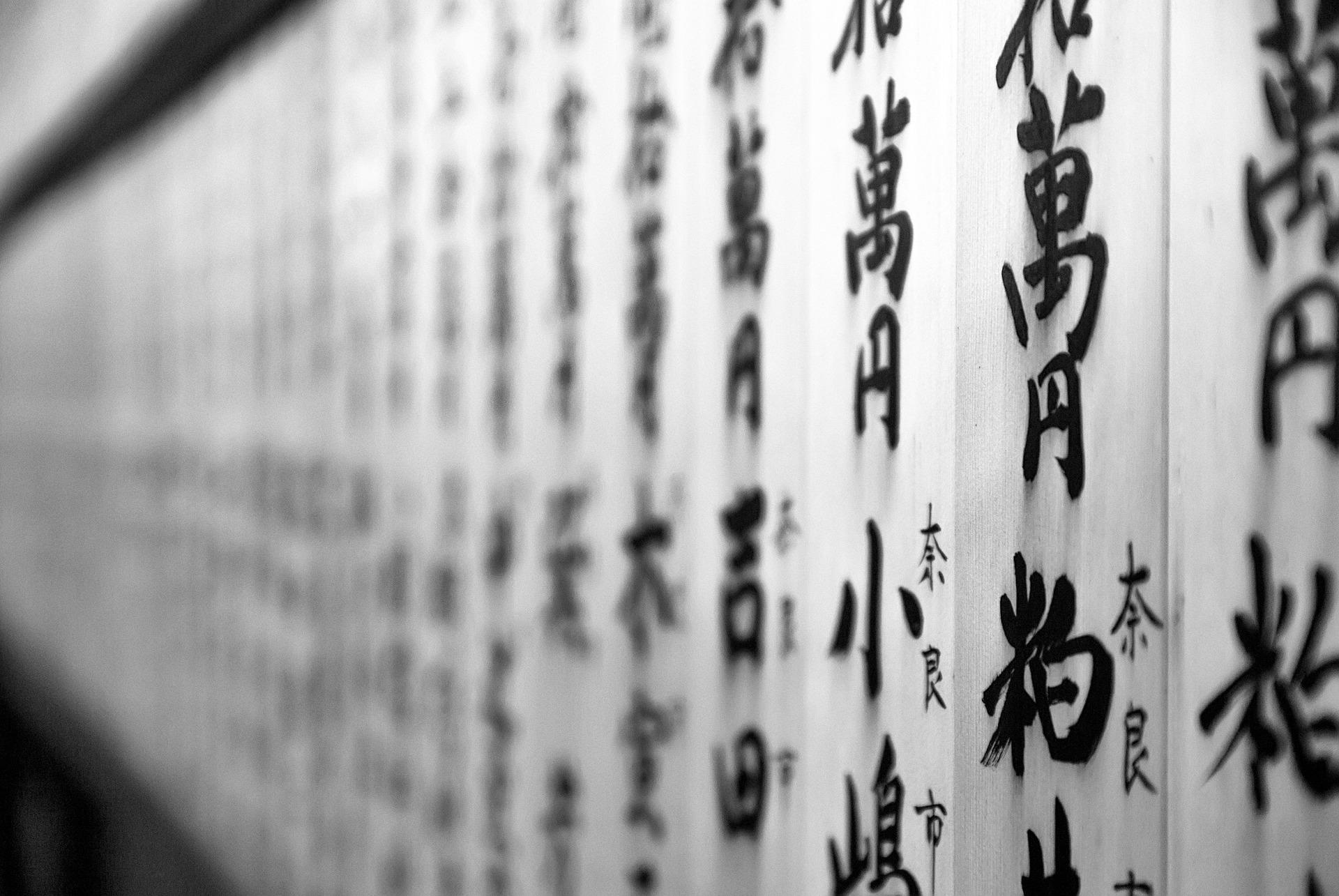映画「書道ガールズ!!わたしたちの甲子園」圧巻の書道パフォーマンスが観れる