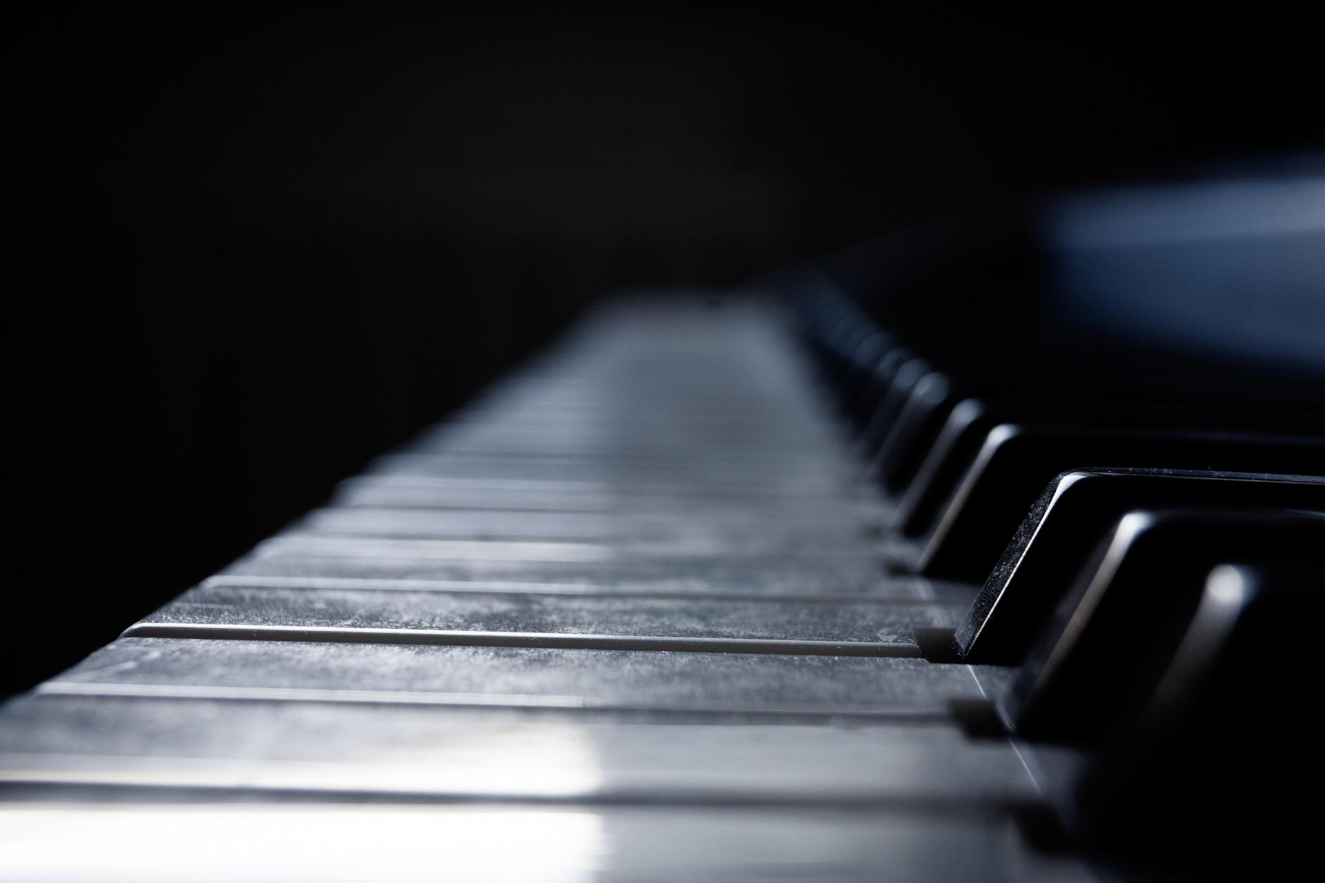 映画「蜜蜂と遠雷」映画ではなくて美しいピアノの音が奏でる音楽